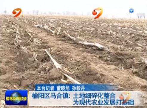 点击观看《榆阳区马合镇:土地细碎化整合 为现代农业发展打基础》